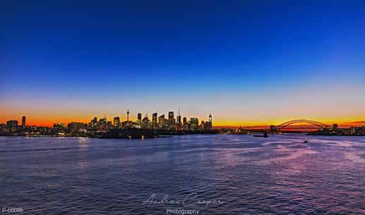 P00088 - Sydney Glow