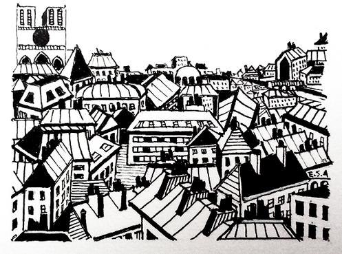 Les toits de Paris - Notre Dame