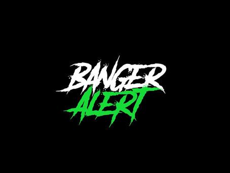 """BANGER ALERT PODCAST REVIEWS """"FLEEKS AND GEEKS"""""""
