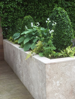 Raised bed with hostas.