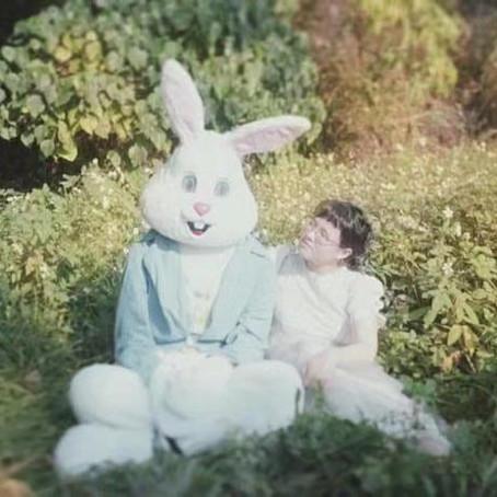 【加料音樂】我想和你生一隻兔