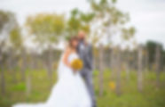 Bride and Groom in the vineyard at Walloon Lake Winery