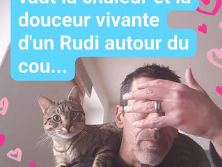 Rudi, mister câlins