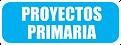 PROYECTOS PRIMARIA.png
