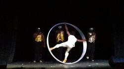 Cyr Wheel
