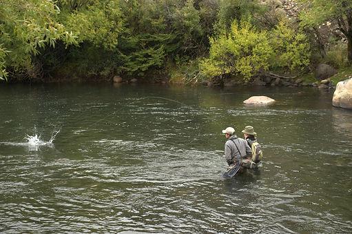 vadeos rio malleo