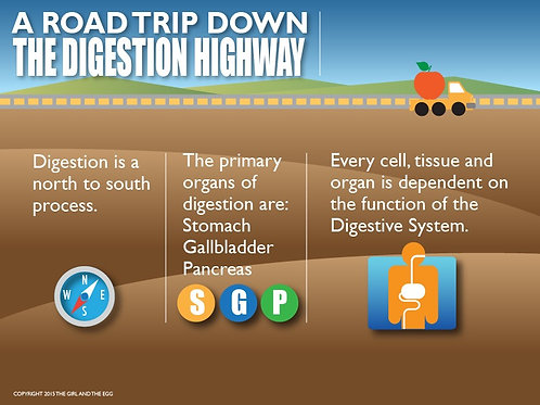 Digestion Highway Presentation