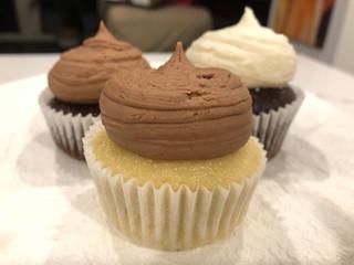 Regular Chocolate or Vanilla