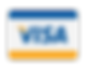 VisaPaymentIcon-TasteportIcons-Dribbble-