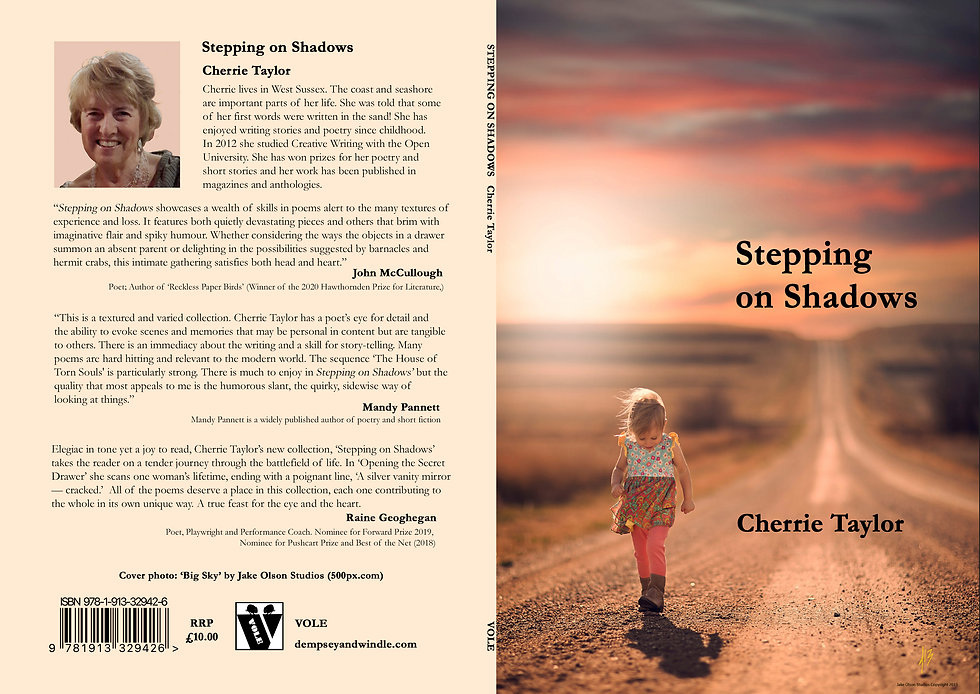 cover Stepping on Shadows[3375] - Copy.j