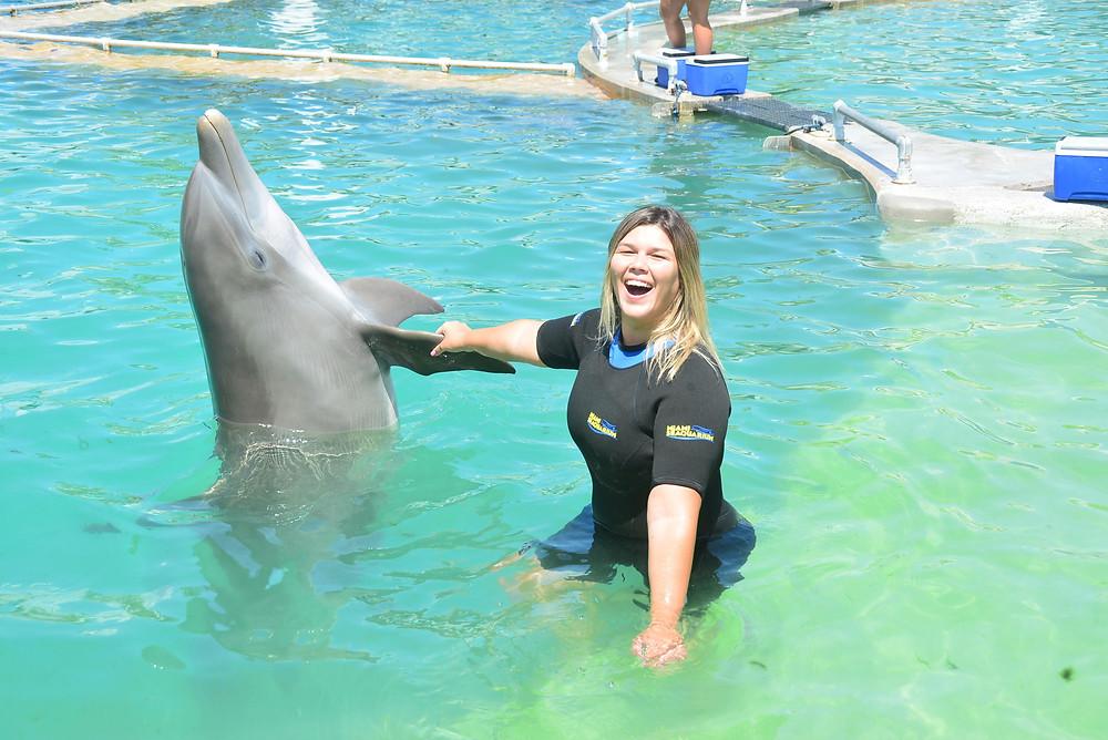 Nadando com golfinho em Miami