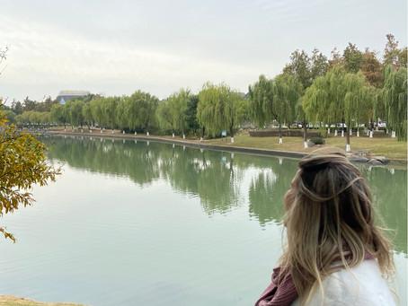 Bate e volta a Zhujiajiao