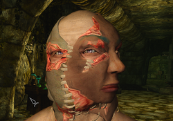Haunted Mask of Extreme Terror
