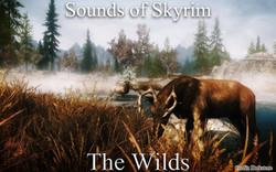 Sounds of Skyrim