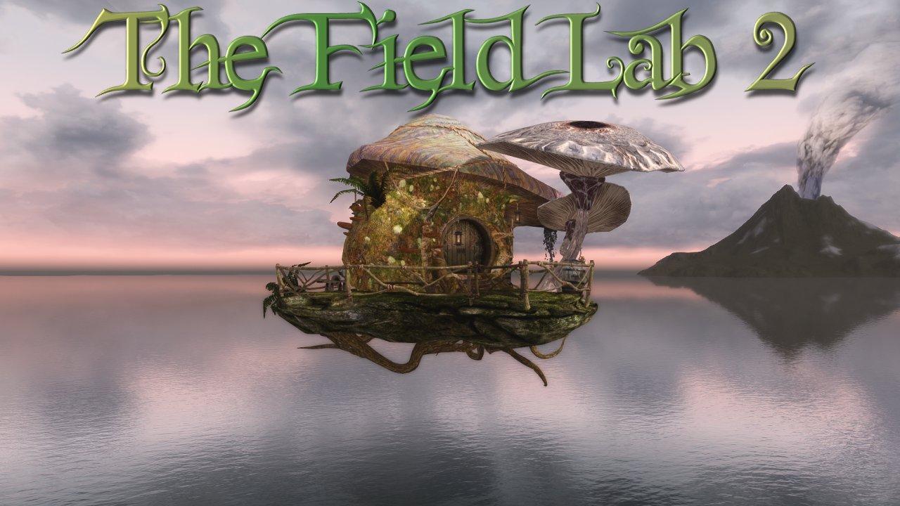 Field Lab 2