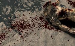 Enhanced Blood Textures