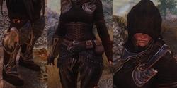Elven Rogue Armor