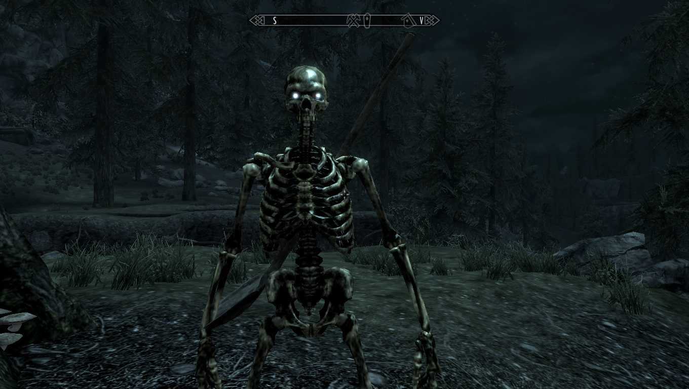 Skeletons of Daggerfall