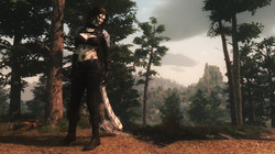 Katarina Armor