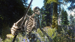 Skyrim Realistic Texture Overhaul Enemies