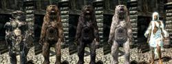 Mudcrab Bear Wisp-Armor