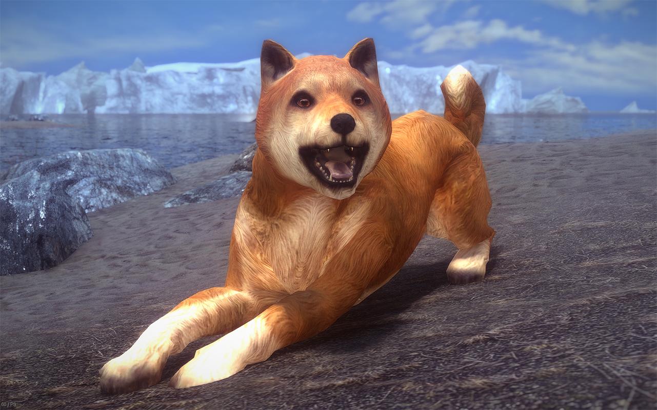 Doge Reborn