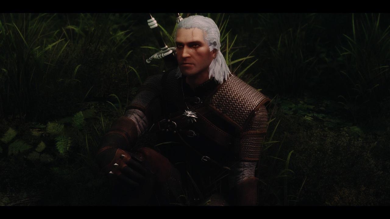 Geralt Of Rivia Voiced Follower The Witcher