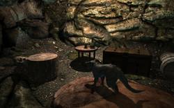 The Rabbit Hole Cave Hideout