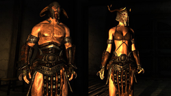 Barbarian Steel Armor
