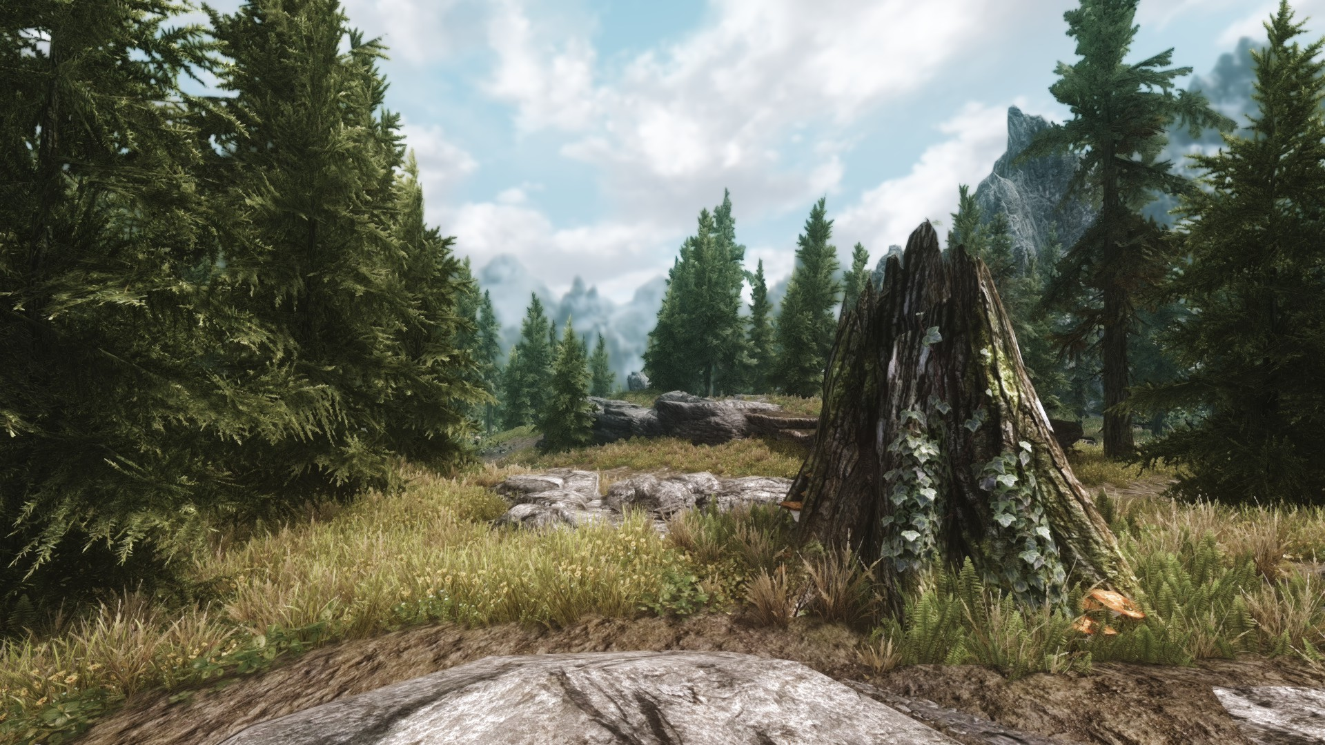 Tundra ENB