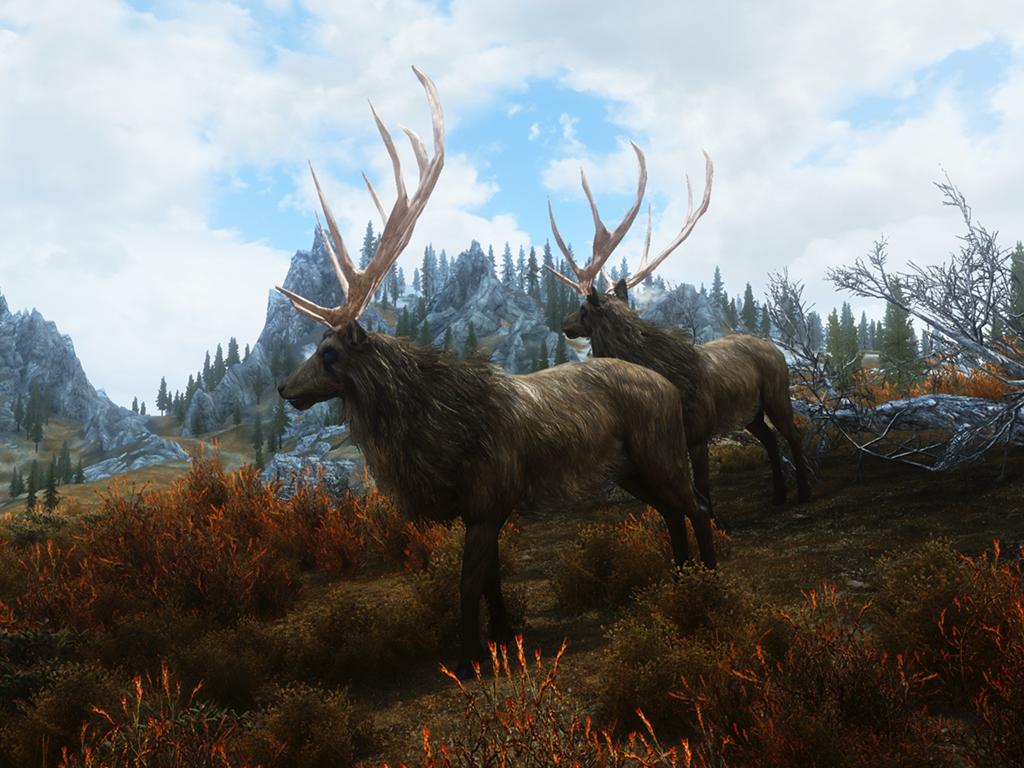 True Elk Of Skyrim