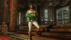 Shakespearean Costume with Tights