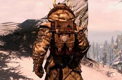 Skaal Heavy Armor