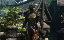 Dragonic Argonian Textures Male