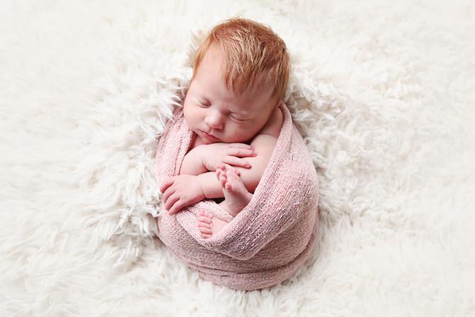 Newborn Evy