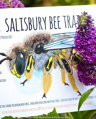 Bee Trail launch - flyer pic.jpg