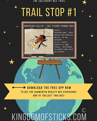 Bee trail stop image email attachment on
