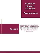 202007-RSC-iWLEqiYzmm-Anexo2.jpg
