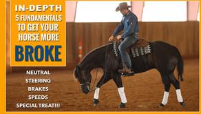 FUNDAMENTALS to Get Your Horses More Broke