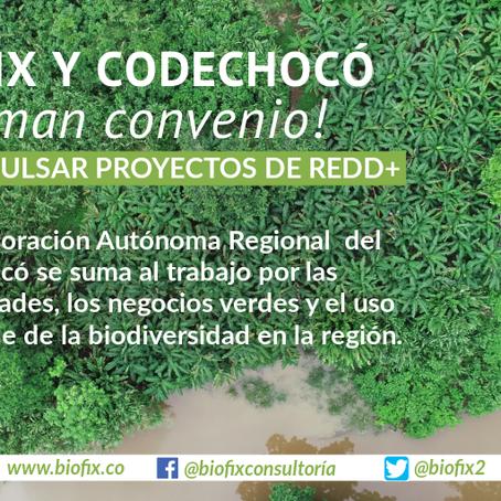 BIOFIX y CODECHOCÓ firman acuerdo para impulsar proyectos de REDD+