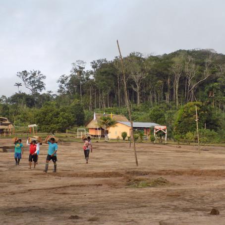 Cómo se benefician los propietarios y custodios de bosques con los proyectos REDD+