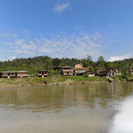 La importancia de los bosques para comunidades afro e indígenas en Colombia