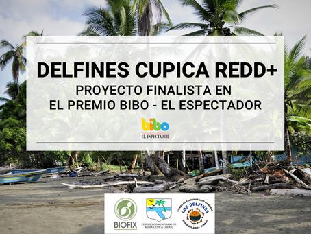 Proyecto DELFINES CUPICA REDD+ es finalista en el Premio BIBO-EL ESPECTADOR