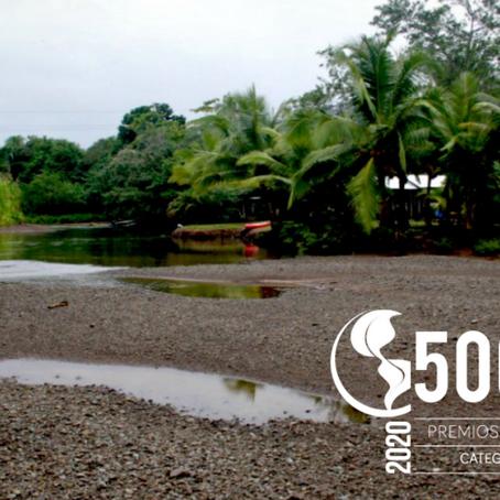 Los proyectos REDD+ Delfines Cupica y Palameku Kuwei, entre los 500 mejores de Latinoamérica