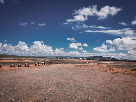 Mongolei-Sandweg.jpg