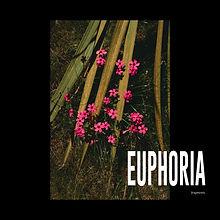 EUPHORIA:fragments_COVERFINAL.jpg