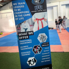 MOZDEH MARTIAL ARTS PULL UP BANNER