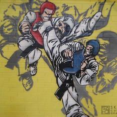 TKD FIGHTER MURAL STREETART