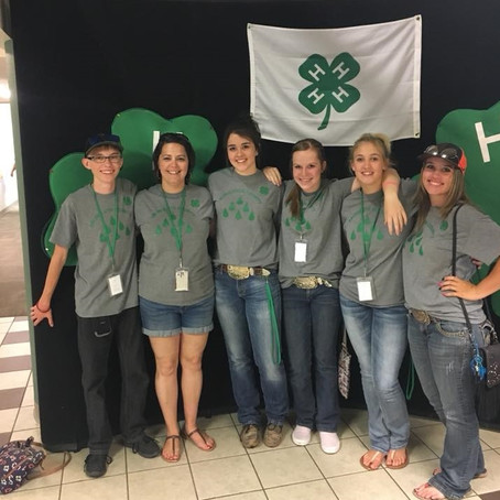 Stay Up with 4-H