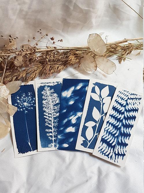 5 Marque-pages - Bouquet 4
